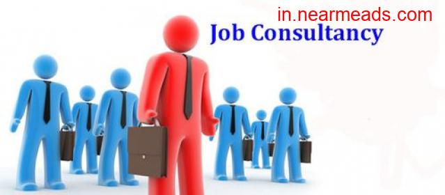 Prime Placement and Manpower Services Ahmedabad - 1