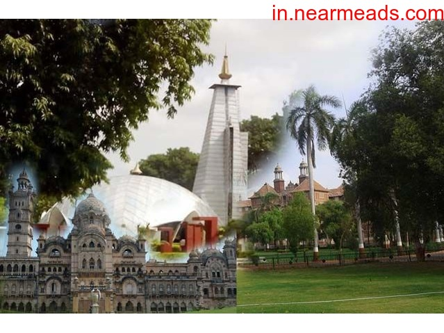 Maa Tours and Travels – Best Travel Company in Vadodara - 1