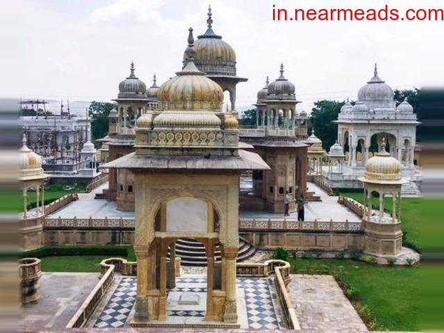 Tours & Taxi Services in Jaipur - 1