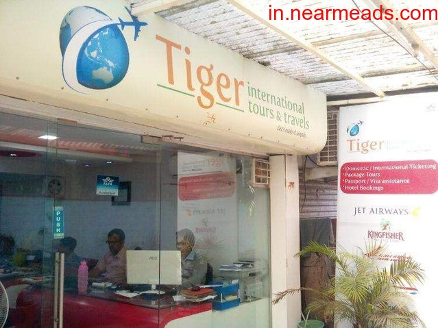Tiger International Tours and Travels in Indore - 1