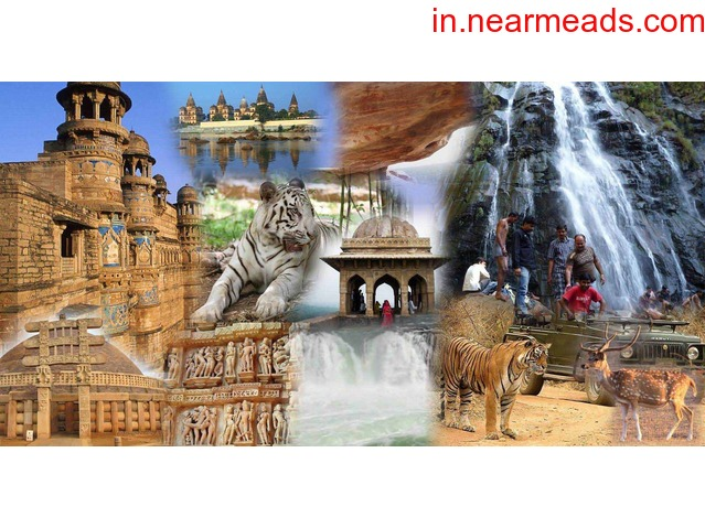 MP Tours and Travels – Best Travel Agency Bhopal - 1