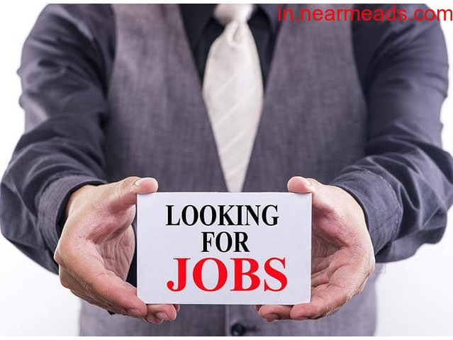 IndSparkles Job – Best Placement Consultants in Ludhiana - 1