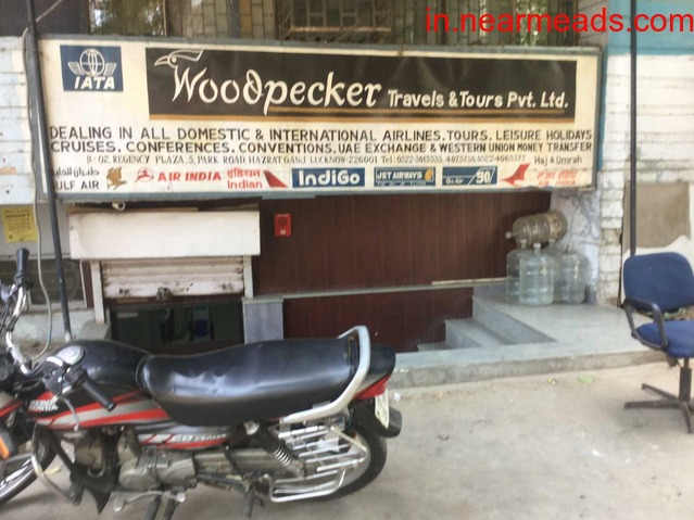 Woodpecker Tours and Travels – Best Travel Agency in Lucknow - 1