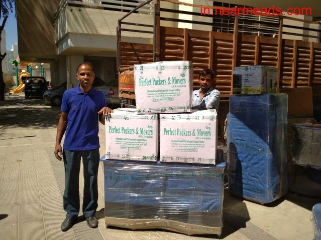 Perfect Packers and Movers in Udaipur - Best Shifting organization - 1