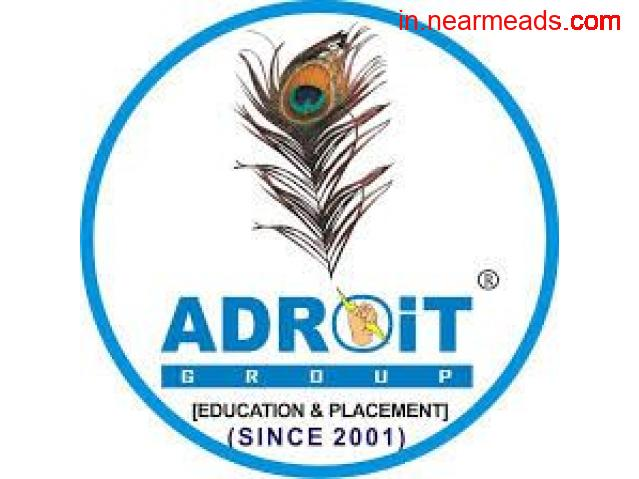 Adroit Jobs International- best placement company in Udaipur - 1