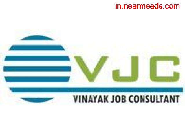 Vinayak Job Consultant- best placement agency Raipur - 1