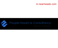People Naukri & Consultancy- Placement Agency in Raipur - Image 1