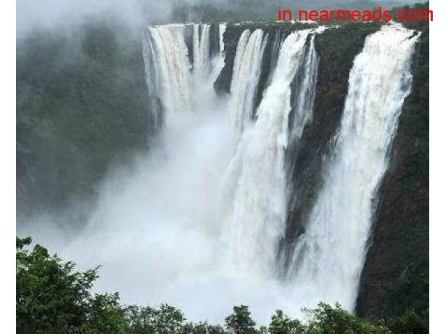Global Tours and Travels – Best Tourism Company in Raipur - 1
