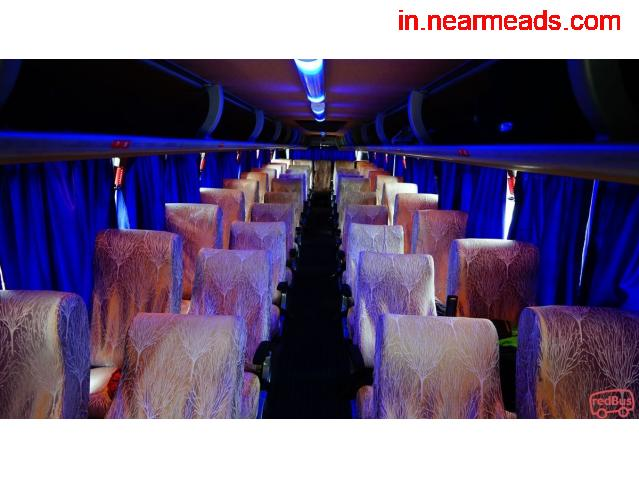 Dolphin Tours and Travels – Best Travel Agency in Raipur - 1
