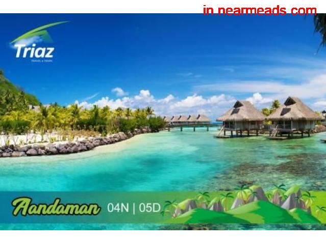Triaz – Best Travel and Tourism Company in Coimbatore - 1