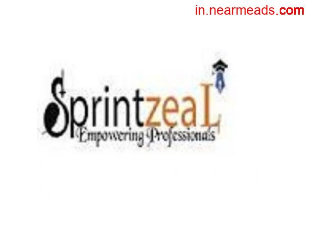 Sprintzeal – Learn the Top Artificial Intelligence Course - 1