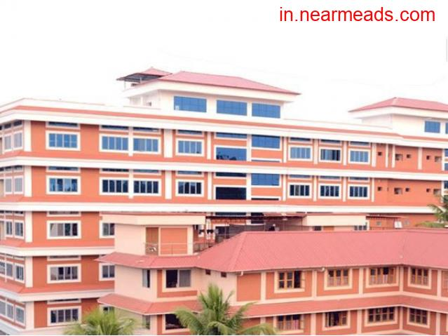 De Paul Institute of Science & Technology (DiST) Angamaly - 1