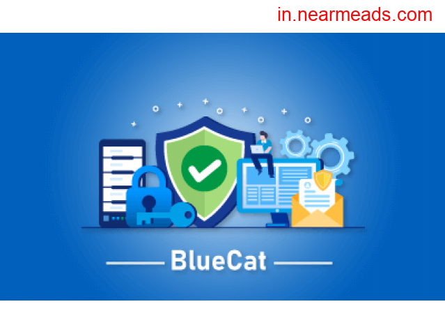 BlueCat Certification Course Online in Bangalore - 1