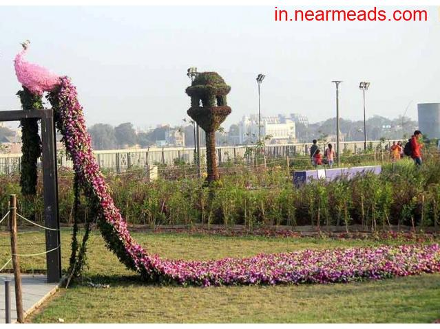 Pinks Travel – Top Tours and Travel Company in Ahmedabad - 1