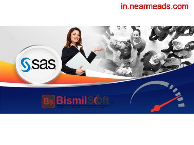 SAS Training Institute In Delhi - 1